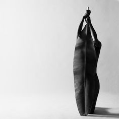Covered Nude1 by veteran photographer Franz Marzouca| Experience Jamaique