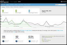 Website Traffic data dashboard by Reinvigorate