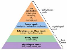 Maslow's Hierarchy of Needs - Maslow Pyramid - Maslows Needs Hierarchy - Hierarchy of Needs. Maslow developed a pyramid of human needs and theory of human motivation. Hierarchy of Psychological Needs. Abraham Maslow, Avicii, Emergency Preparedness Checklist, Emergency Food, Types Of Motivation, Motivation Success, Maslow's Hierarchy Of Needs, Psychological Theories, Psychological Horror