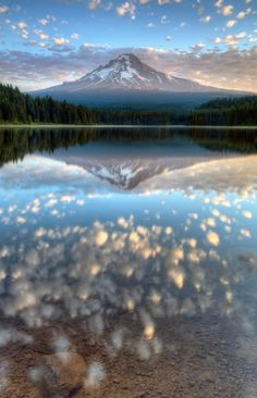 Trillium Lake. Mount Hood. Oregon.  $17 a night for a camping spot. by laurie