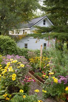 The cutting garden overflows with echinacea, coneflowers, and false sunflowers—all of which do just fine with a once-a-week watering.