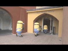 Love these new Despicable Me Kids' Suites at Loews Portofino Bay Hotel!