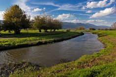 The Hula valley  by Mark Kats on 500px
