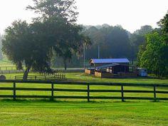 Magnolia Ridge Horse Farms For Sale - Rob & Chris Desino, Ocala Ranches For Sale and Florida Horse Farms For Sale - $895000