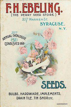 1897 catalogue