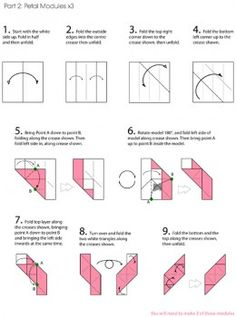 cubic-rose circuit part 2