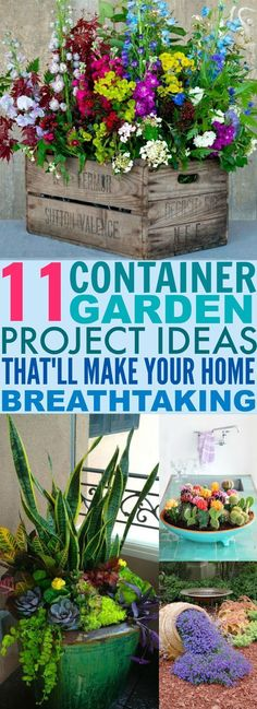 These 11 Container Garden DIY Designs Are ADORABLE! I love how you have options for both the indoors and outdoors (all beautiful)!