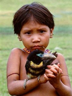 Yanomamo girl holds Aracari bird in Parima Tapirapeco National Park, Venezuela. The Park is in the southern state of Amazonas. Established in August 1991, it is the largest national park in Venezuela. (V)