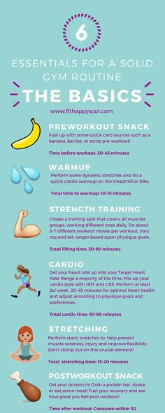 A Beginner's Guide to the Gym: The Basics