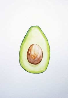 avocado watercolor 9 x 12 by artist Gina Feddersen. ©2016