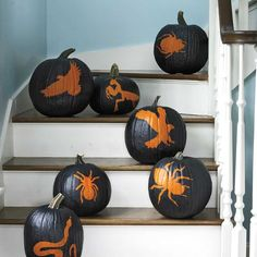 A huge collection of the best creative pumpkin decorating ideas for Halloween! Including traditional pumpkin d Easy Halloween Crafts, Scary Halloween Decorations, Halloween Pumpkins, Fall Decorations, Halloween Ideas, No Carve Pumpkin Decorating, Pumpkin Carving, Pumpkin Painting, School Holiday Party