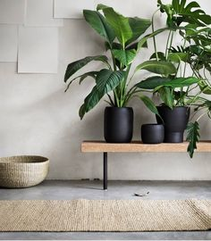 The SINNERLIG's rustic-meets-minimalism look allows the collection to seamlessly blend in within a variety of decorative aesthetics. We're seriously coveting those matte black vases!