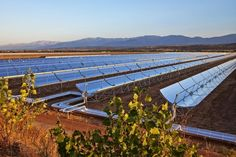 Noor Solar Project Leads Morocco's Clean Power Drive: Oxford Business Group - See more at: http://one1info.com/article-Noor-Solar-Project-Leads-Morocco%E2%80%99s-Clean-Power-Drive-Oxford-Business-Group-7728#sthash.nAKB5oep.dpuf