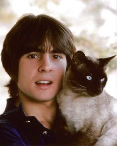 Extra aww factor!  Davy Jones with a cat.  The Monkees.