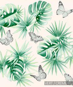 lile_aux_papillons.jpg