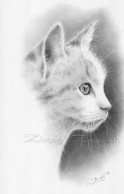Images for drawing realistic cats - ARTE animali - Cat Drawing Pencil Portrait Drawing, Cat Drawing, Pencil Art, Drawing Sketches, Drawing Tips, Drawing Ideas, Sketching, Animal Drawings, Pencil Drawings
