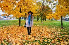 Marti - moda i hobby: Jesienny liść