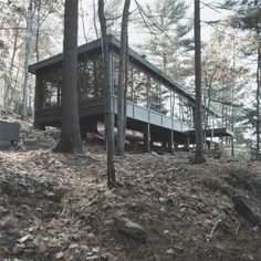 modern cabin   Tumblr