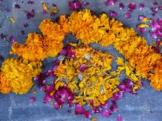 Diwali rangoli flowers