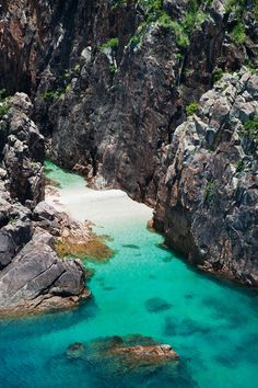 Hayman Island Dive tours are led by a marine biologist. #Jetsetter