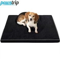 Cheap memory foam dog bed, Buy Quality dog bed waterproof directly from China dog bed Suppliers: Memory Foam Dog Beds Waterproof Oxford Bottom Orthopedic Mattress Beds For Large Dogs ML/XL Big Dog Beds, Pet Beds, Baby Beds, Compare Dog Food, Orthopedic Dog Bed, Dog Dental Care, Dog Care, Thing 1, Pet Mat
