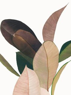 Trendy plants illustration pattern nature - New Ideas Art And Illustration, Pattern Illustration, Botanical Art, Painting Inspiration, Color Inspiration, Art Photography, Decoration, Plants Pattern, Nature Pattern