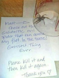 Gigantic Evil Spider From Hell