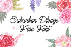 DLOLLEYS HELP: Suburban Pledge Free Font