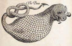 The History of Four-footed Beasts and Serpents (1658) | The Public Domain Review Nice scaling on that 'boa.'