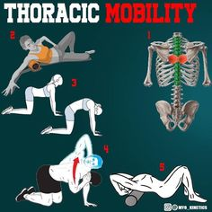 Yoga and Stretching Exercises to IMPROVE THORACIC MOBILITY! 5 exercise combo to improve your thoracic mobility. A lot of us lack thoracic mobility and it can lead to compensations down the chain leading to potential back pain, or problems with scapular mechanics etc, not always but it is possible. The first thing you'll want to do is release your thoracic paraspinal muscles, when we have poor moibility in the spine those muscles tend
