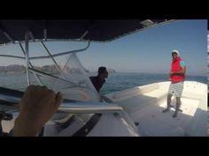 Kesha Ayres takes over the Gulf Sea