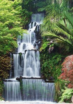 Waterfall at Pukekura Park, New Plymouth (near Napier), NZ . . . It changes colours during summer evenings. Our kids loved this when they were small