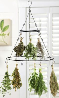 Magical Herbs, Incense and Oils on Pinterest | 869 Pins