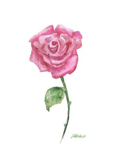 """Pink Rose watercolor painting giclee print reproduction. The paper measures 5""""x7"""". Printed on fine art paper using archival pigment inks. This high quality cotton paper makes it hard to tell the origi"""