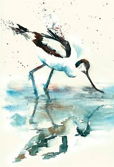 How to Paint Animals and Birds in Watercolour with Liz Chaderton