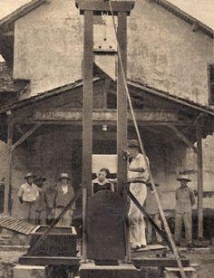 La guillotine du bagne de Saint-Laurent-du-Maroni devant le TMS en 1939, identifiée en juin 2009.