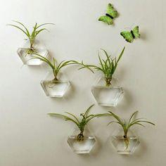 """New Home Living Room Decor Glass Wall Hanging Plant Flower Glass Vase Containe Terrarium Wall Fish Tank Aquarium Decor Container"""