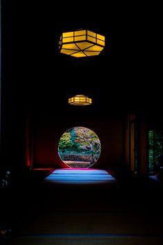 Meigetsuin Temple - Kamakura, Kanagawa, Japan:こんな和もたまりません。