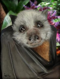 Caesar - gray-headed flying fox Digital painting and Photoshop effect filters Original photo by Nathan Hogarth