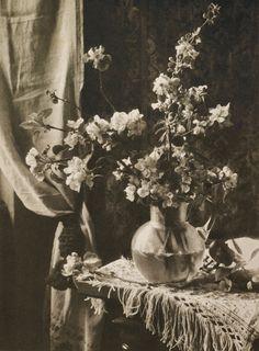 Heinrich Kühn, Stillleben, 1896