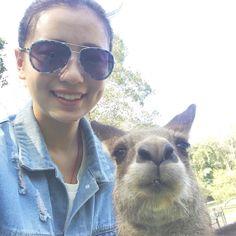 It's quiet hard to take a #selfie with the #kangaroo ! #KangarooSelfie #CurrumbinWildlifeSanctuary #GoldCoast #Australia #InstaTravel by sh1rley0815 http://ift.tt/1X9mXhV