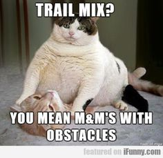 Trail Mix? You Mean M&m's With - http://wittybugs.com/trail-mix-you-mean-mms-with/