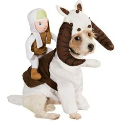 """Your four-legged friend can transport a Rebel Alliance fighter into the fray with this Tauntaun Pet Costume! Tauntauns were a great way the way for Luke Skywalker and Han Solo to get around the ice planet Hoth. Now your pooch can help the rebels in this adorably detailed Star Wars pet costume. Featuring a plush rebel fighter atop a screen-printed saddle, with stuffed front """"arms"""" and a lovable headpiece, this dog costume will have your pup wagging his tail with excitement. Only $18.99. #Star..."""