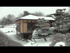 #Snow falling on the #Malott #Japanese #Garden