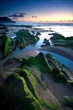 アルブフェイラ(ポルトガル)の海辺です。  苔の生え方が素敵ですね。