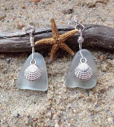 417 Clam earrings on clear seaglass - S