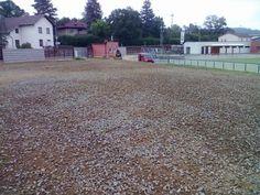 Štěrkové zelené parkoviště- Travní směs pro štěrkový trávník - klikni pro větší velikost
