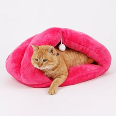 Great savings on this Cat Pouch with Pawsifty - your source of daily pet deals with free worldwide delivery. http://www.pawsify.com/product/cat-pouch/