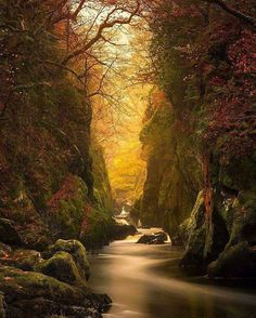 Fairy Glen Gorge, River Conwy - Science And Nature Beautiful World, Beautiful Places, Beautiful Pictures, Beautiful Scenery, Amazing Photos, Natural Scenery, Image Nature, Nature Photos, Earth Photos