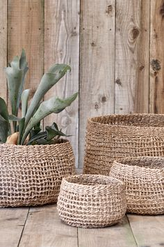 Our open weave seagrass baskets are the ideal plant pot covers or storage solution for the home. Lined Wicker Baskets, Wicker Baskets With Handles, Rattan Basket, Stair Basket, Wood Railings For Stairs, Storage Baskets With Lids, Plant Basket, Open Weave, Bohemian Decor